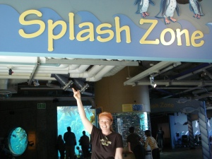 Welcome to Monterey Bay Aquarium's Splash Zone!